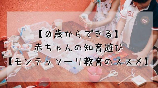 【0歳からできる】 赤ちゃんの知育遊び 【モンテッソーリ教育のススメ】